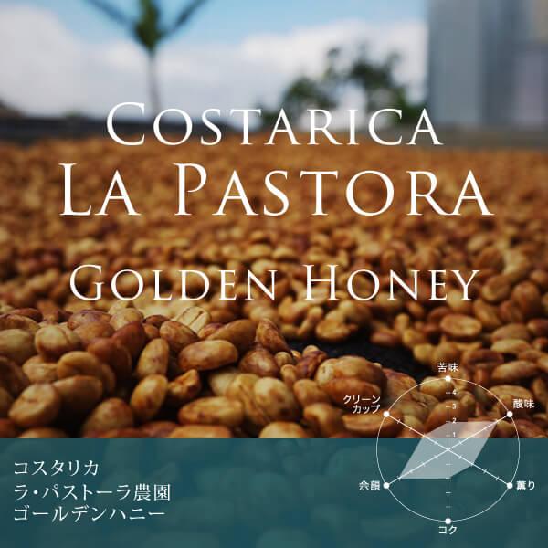 コスタリカ ラ・パストーラ農園 ゴールデンハニー