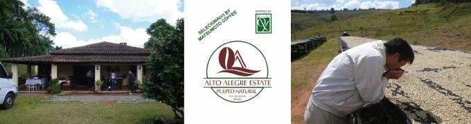 ブラジル アルトアレグレ