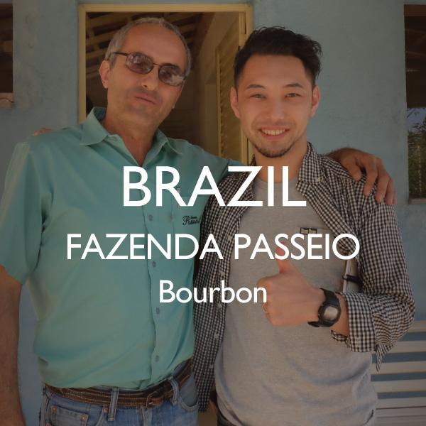 ブラジル パッセイオ農園 ブルボン