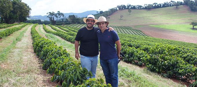 ブラジル サントゥアリオ・スル農園 イメージ写真